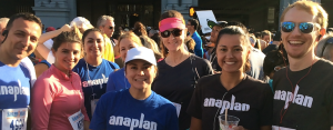 Anaplan Bridge-to-Bridge 2015 cropped